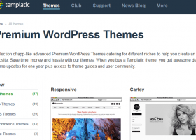 WordPress Themes Club